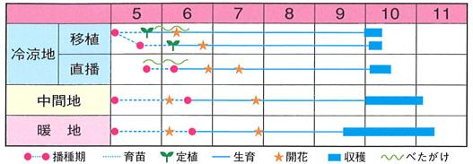 栽培の目安表